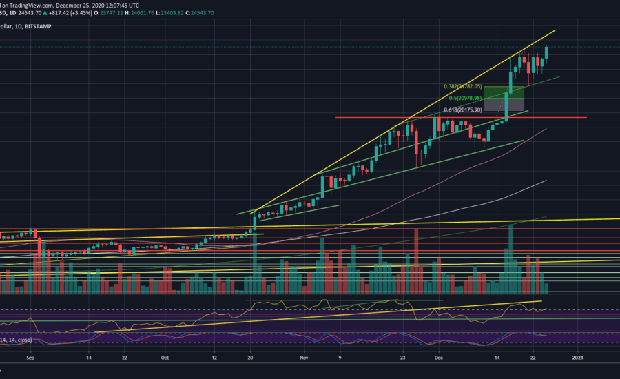 Bitcoin Just Recorded Another All-Time High: Is $25K Incoming? (BTC Price Analysis)