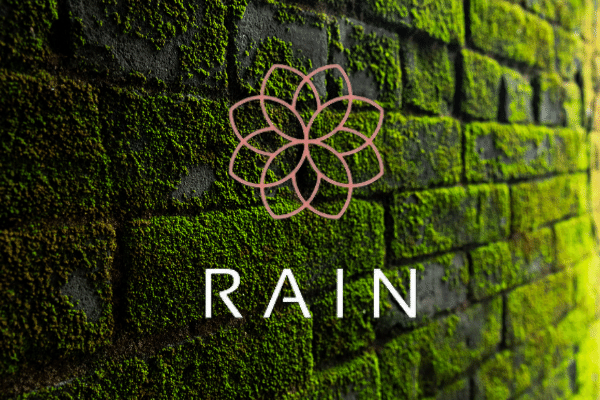 Bahrain-based Rain Cryptocurrency Exchange Secures $6 Million From Coinbase