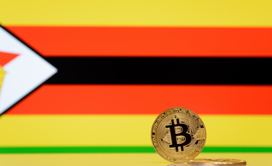 Zimbabwean Minister Says Cryptocurrency Based Solutions 'Could Lower Charges for Diaspora Remittances'